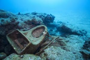 Toilet Bowl Resting on Coral Reef in Dominican Republic by Paul Souders