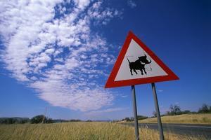 Warthog Crossing Sign by Paul Souders