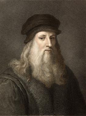 1490 Leonardo Da Vinci Colour Portrait by Paul Stewart