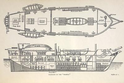 1832 Darwin's Ship HMS Beagle Plan