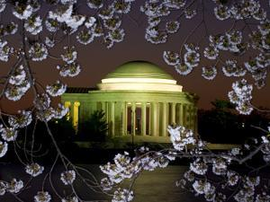 Jefferson Memorial at Dawn, and Cherry Blossoms at the Tidal Basin by Paul Sutherland