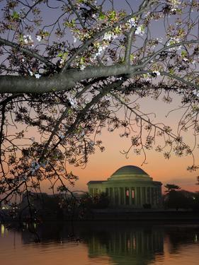 The Jefferson Memorial and Reflection on the Tidal Basin, at Dawn by Paul Sutherland