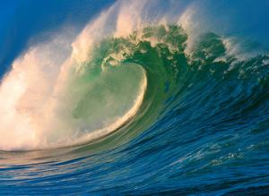 Morning Light Hawaii - Tube Barrel - Breaking Wave by Paul Topp