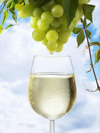 White Wine Dripping from Grapes into a Wine Glass