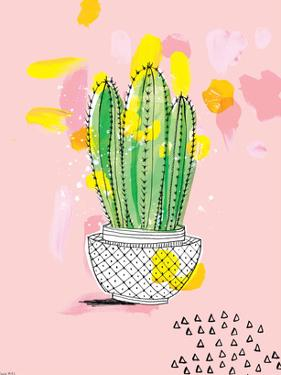Cactus by Paula Mills