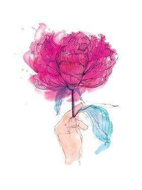 Rose by Paula Mills