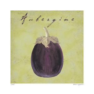 Aubergine by Paula Scaletta