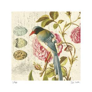 Bird Study 1 by Paula Scaletta