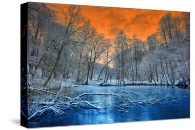 Spectacular Orange Sunset over Winter Forest by paulgrecaud