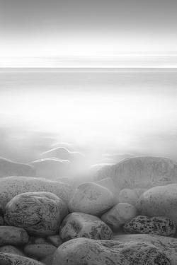 Moog Island by Paulo Abrantes
