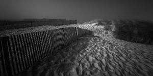 Where Shadows Lie by Paulo Abrantes