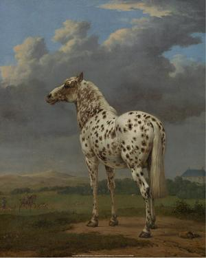 """The """"Piebald"""" Horse, 1650-54 by Paulus Potter"""