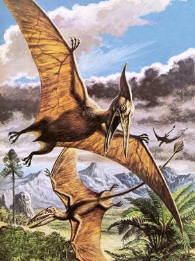 Pteranodon by Payne