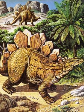 Stegosaurus by Payne