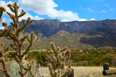 Beautiful Albuquerque Landscape with the Sandia Mountains by pdb1