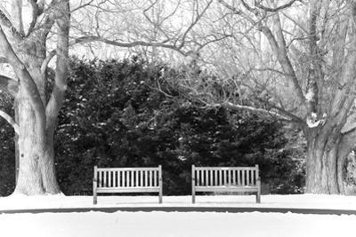 Pair of Benches in the Snow by pdb1