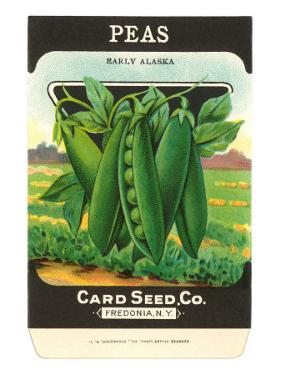 Pea Seed Packet