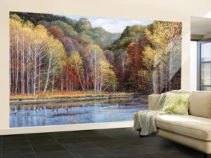 Peaceful Settings Huge Mural Art Print Poster Large