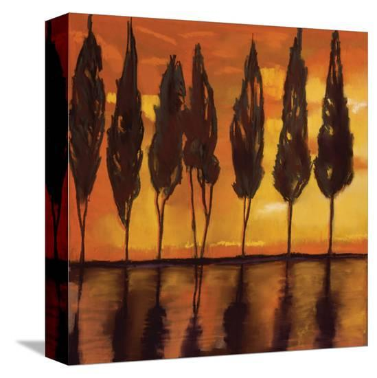Peaceful Trees at Sunset-Judith D'Agostino-Stretched Canvas