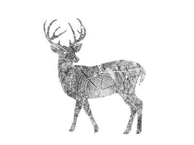 Deer by Peach & Gold