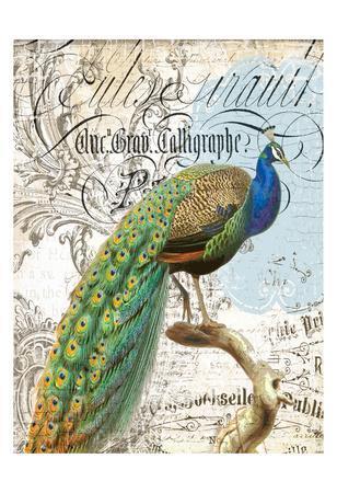 https://imgc.allpostersimages.com/img/posters/peacock-2_u-L-F6FYHT0.jpg?p=0