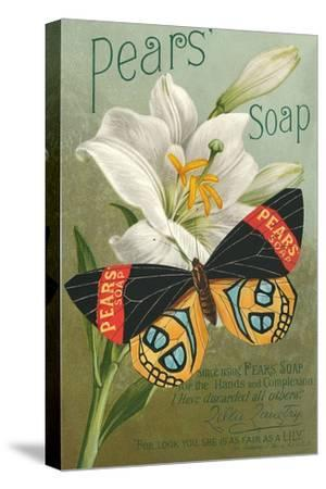Pear's Soap Ad, Lily