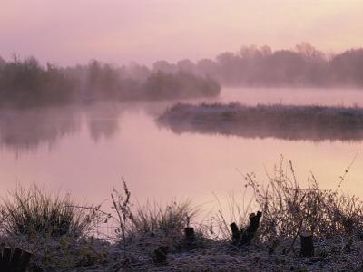 Moor Green Lakes Nature Reserve, Finchamstead, Berkshire, England, UK by Pearl Bucknall