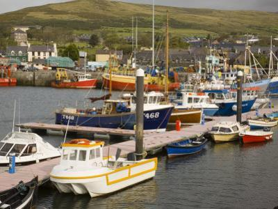 Natural Harbour, Dingle,Dingle Peninsula, County Kerry, Munster, Republic of Ireland by Pearl Bucknall