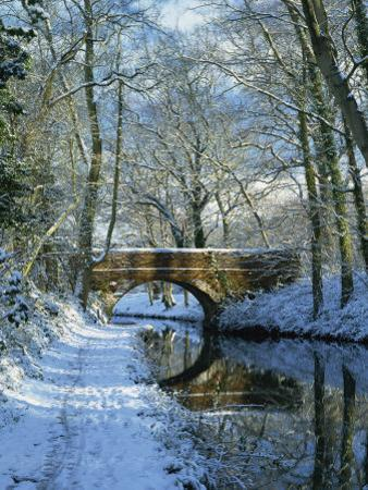 Snow on the Basingstoke Canal, Stacey's Bridge and Towpath, Winchfield, Hampshire, England, UK by Pearl Bucknall