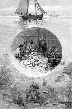 Pearl Fishery, Torres Strait, Australia, 1886