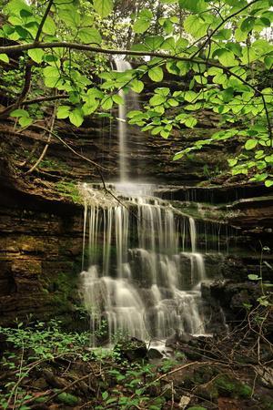 https://imgc.allpostersimages.com/img/posters/pearly-creek-falls-buffalo-river-trail-arkansas_u-L-Q1CZXL80.jpg?p=0
