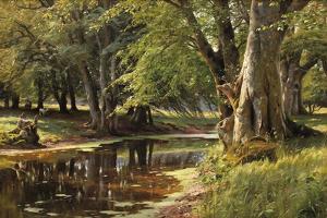 Forest Landscape by Peder Mork Monsted