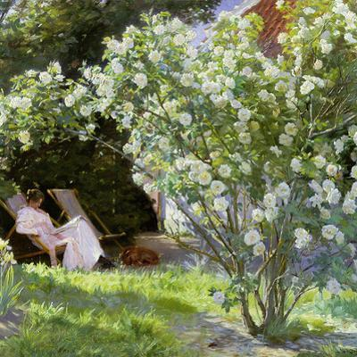 Roses, or the Artist's Wife in the Garden at Skagen, 1883 by Peder Severin Kröyer