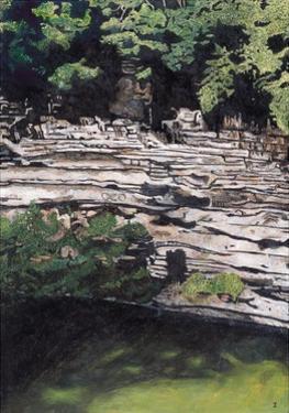 Cenote at Chichen-Itza (Diptych) I, 2003 by Pedro Diego Alvarado