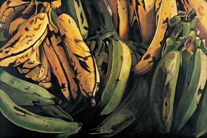 Green and Ripe Plantains, 2009 by Pedro Diego Alvarado