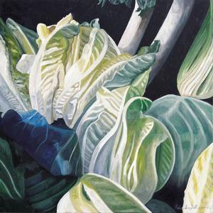 Lettuce and Leeks, 2002 by Pedro Diego Alvarado