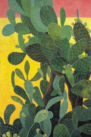 Nopal Cactus in Teotihuacan, 2001
