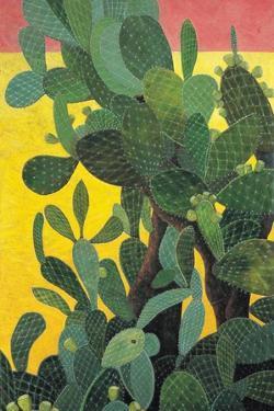 Nopal Cactus in Teotihuacan, 2001 by Pedro Diego Alvarado