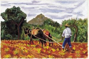 Ploughing, 1995 by Pedro Diego Alvarado
