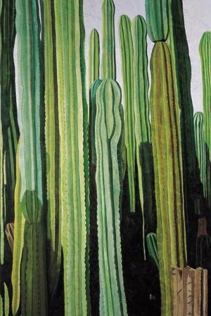 Vertical Candelabro Cactus in Oaxaca, 2003