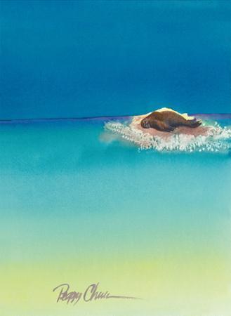 Beach Bum - Hawaiian Monk Seal Basking on Tiny Island (Mokupuni) by Peggy Chun