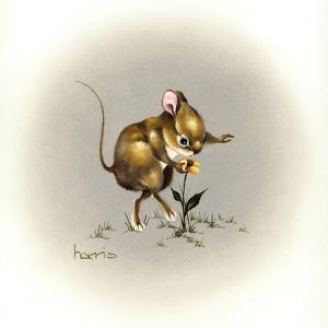 Flower Power by Peggy Harris