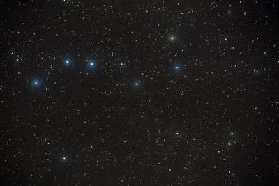 Constellation of Ursa Major, the Great Bear.