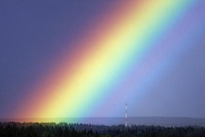 Rainbow Over Trees by Pekka Parviainen