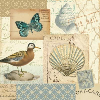 Coastal Collage I by Pela Design