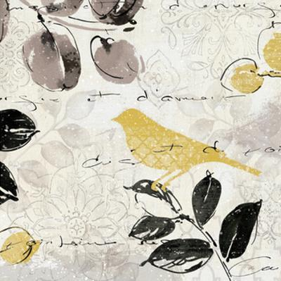 Plume and Motif II by Pela Design