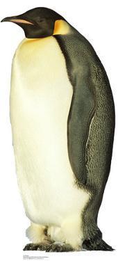 Penguin Lifesize Standup