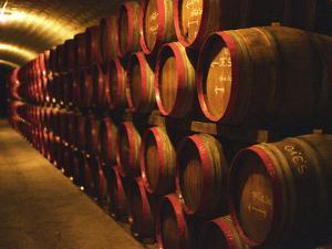 Barrels of Tokaj Wine in Disznoko Cellars, Hungary by Per Karlsson