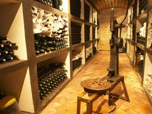 Bottle Aging Cellar, Bodega Pisano Winery, Progreso, Uruguay by Per Karlsson