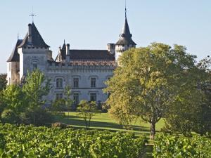 Chateau with Turrets and Vineyard, Chateau Carignan, Premieres Cotes De Bordeaux, France by Per Karlsson